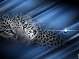 os x leopard wallpaper wallpapersafari