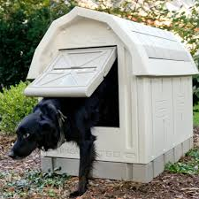 Petmate Indigo 10 Comfy Dog Kennels For Your Pets Evercoolhomes