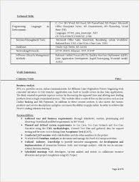 Resume Headline Example Business Analyst Finance Domain Resume Resume For Your Job