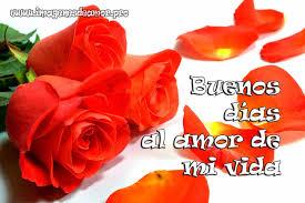 imágenes de buenos días para mi gran amor imágenes de rosas para desear buenos días