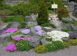 Images Of Rock Gardens Rock Gardens American Rock Garden Society