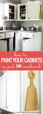Ready To Paint Kitchen Cabinets 41 Best Kitchen Remodel Images On Pinterest Kitchen Ideas