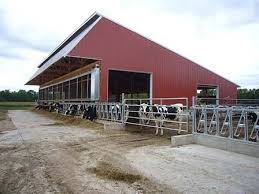 Calf Raising Barns Interesting Farm Dairy Farm Barn Virtual Tours The Dairyland