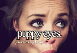 Puppy Dog Eyes Meme - puppy eyes justpost virtually entertaining