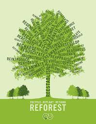 recycle replant rethink reforest source ryantimesfive