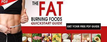 burn fat with a cyclic ketogenic diet drjockers com
