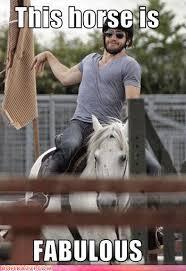 Gay Horse Meme - jake gyllenhaal vintage pinterest horse jake gyllenhaal and