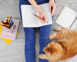Home Based Design Jobs And Home Based Jobs For Pet Lovers