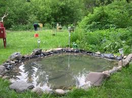 Backyard Fish Pond Ideas Small Fish Pond Design Ideas Pool Design Ideas