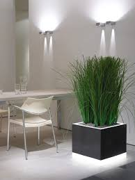 House Plant Ideas by Example Of Indoor Plants In A Corporate Office In Burwood And