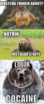 Coke Bear Meme - pablo eskobear album on imgur