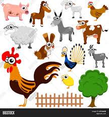 cartoon farm animals vector vector u0026 photo bigstock