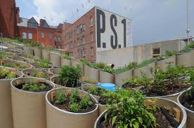 ps1 young architects n stall pinterest urban agriculture