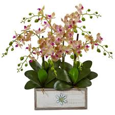 artificial orchids orchids arrangements nearly