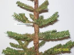 best 28 german twig trees wholesale tree alluring