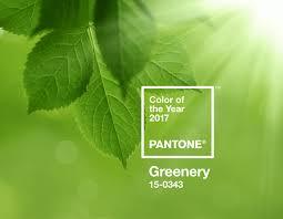 pantone names greenery as 2017 colour of the year design week