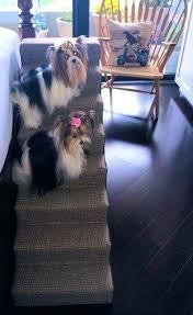 dog steps for high beds diy bathroomamusing dog beds folding