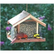 best backyard bird feeders