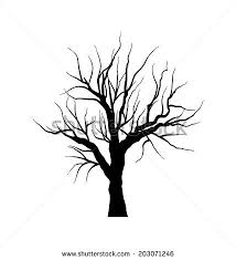 autumn tree without leaves stock images royalty free images