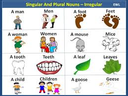 15 best year 2 english images on pinterest irregular plural