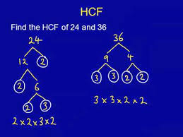 hcf lcm mathscasts youtube