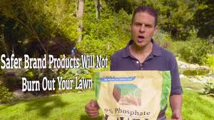 Fertilizer For Flowering Shrubs - how to choose the proper fertilizer for your flowers lawn trees