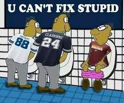 Funny Washington Redskins Memes - 28 best redskins memes images on pinterest funniest pictures