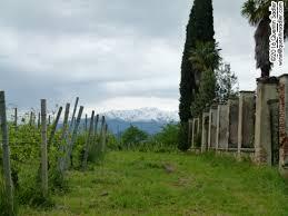The 5 Lands U2013 Cinque Terre U2013 July 4th To July 7th 2017 U2013 Just A by Merlot Quentin Sadler U0027s Wine Page