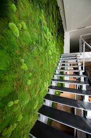 Indoor Garden Wall by Green Wall Of Forest Moss And Poll Moss From 3d Panels Gardens