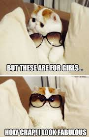 Holy Crap Meme - but these are for girls holy crap i look fabulous memes