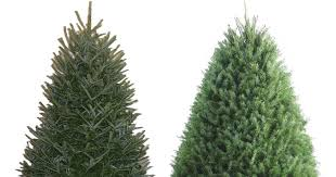 lowe s 25 fresh trees 3 5 foot fraser fir trees