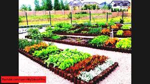 Raised Bed Gardens Ideas Small Home Backyard Vegetable Garden Ideas Patio Top About Gardens