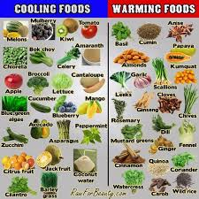 ayurveda chart cooling and warming foods health pinterest