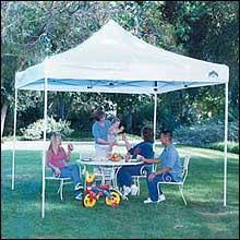 tent rentals denver rainbow party rentals basic tent prices