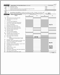 3 12 217 error resolution instructions for form 1120s internal