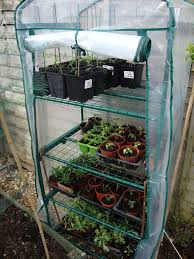 Green House Plans Best 25 Homemade Greenhouse Ideas On Pinterest Greenhouse