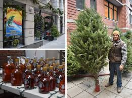 where to buy christmas trees in dumbo