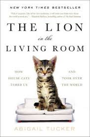 in the livingroom the in the living room how house cats tamed us and took