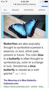 my idea on max s butterfly picture is strange amino