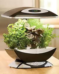 aero garden com amazoncom miracle gro aerogarden ultra led