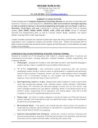 summary in resume examples resume examples experienced professional resume template sample resume examples resume world inc tel email summary of qualifications experienced professional resume template overview