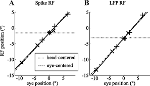 receptive field positions in area mt during slow eye movements