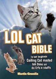 Lolcat Meme - lolcat bible teh meme wiki fandom powered by wikia