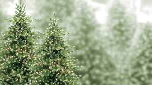 best artificial christmas tree the best artificial christmas trees in the country are at aldik