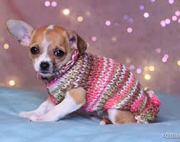 puppy sweater etsy