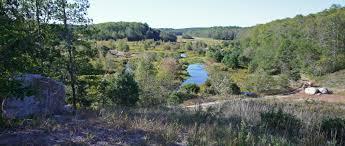 native plants of massachusetts gaining ground u2013 land protection blog a mass audubon blog