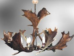 home interior deer pictures magnificent deer antler chandelier design which will you