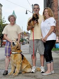 Comfort Dogs Certification 252 Best Pet Therapy In The News Images On Pinterest Therapy