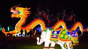 lantern light festival fair expo center family events