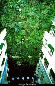 56 best blank style images on pinterest vertical gardens